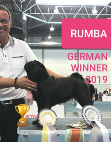 German Winner Show 2019